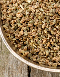 06-Benefits-of-Spices-Celery-seed-1