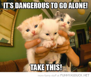 funny-cute-bunch-kittens-dangerous-go-alone-take-these-zelda-pics